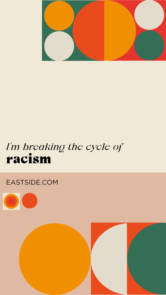 break the cycle of racism
