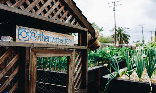 the-riverbed-farm-renewable-farms